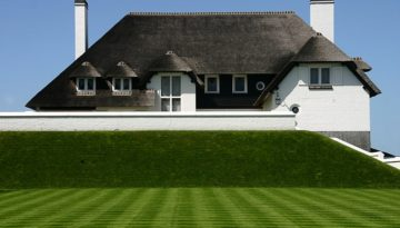 thatched roofing bristol